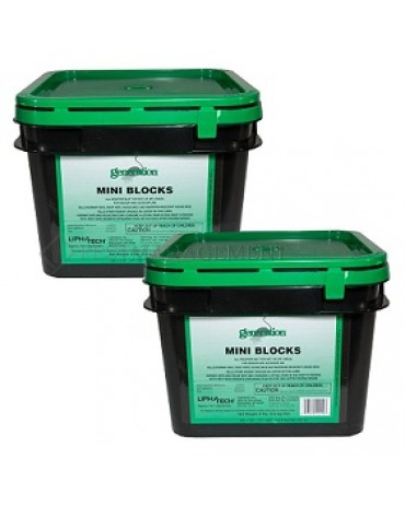 GENERATION MINI BLOCK 4 x 4# (91 x 20 gm) BAGS/CS